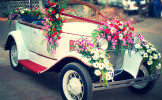 Wedding Cars (5)